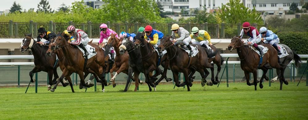 Galop France Pronostic | Pics | Download |