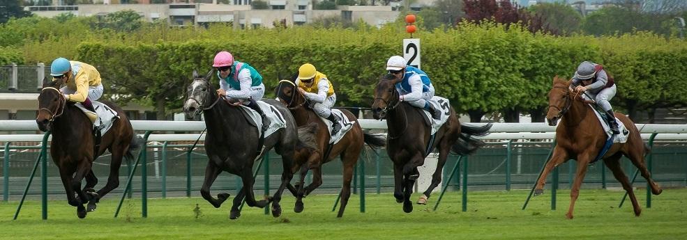 Prix d'Alençon - course pmu du 18 août 2016