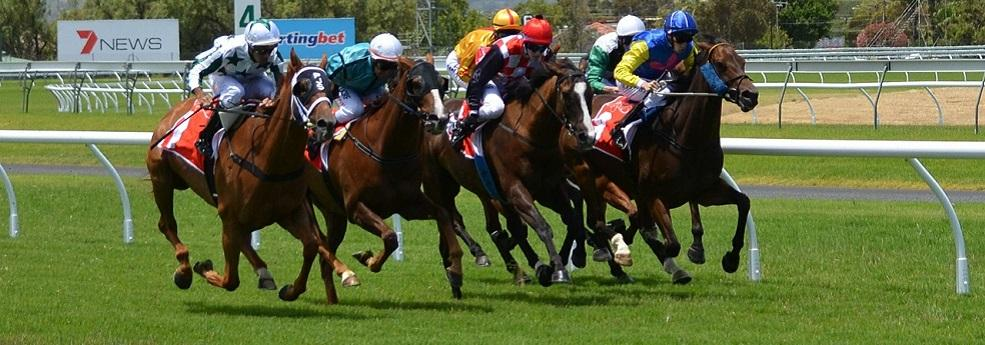 Pronostic Quinté du 11 septembre 2016 – Grand Handicap des Hauts de France