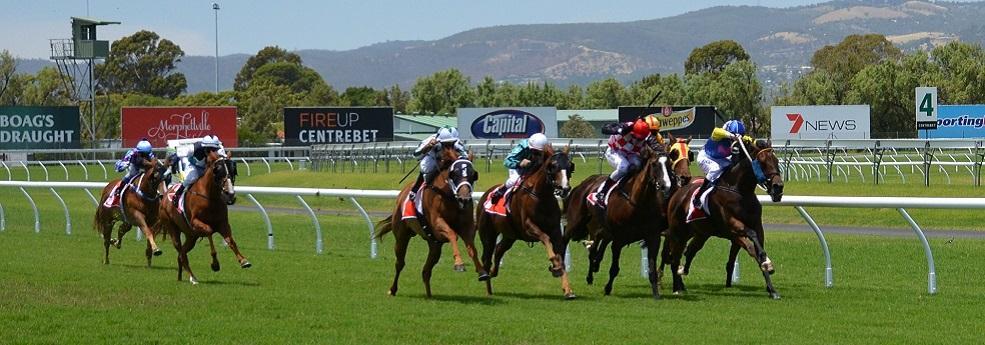 Pronostic Quinté du dimanche 23 octobre 2016 – Grand Prix des Femmes Jockeys