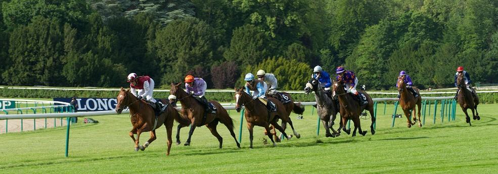 Prix de la Forêt de Fontainebleau - course pmu du 18 mai 2017