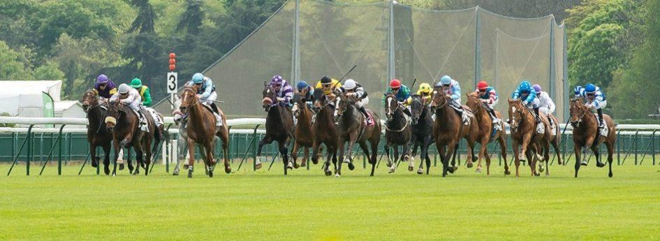 Grand Handicap de l'Hippodrome des Princes de Condé - course pmu du 31 mai 2017