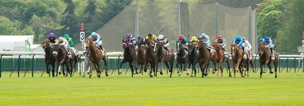 Prix Casino Barrière Deauville - Course pmu du 27 août 2017