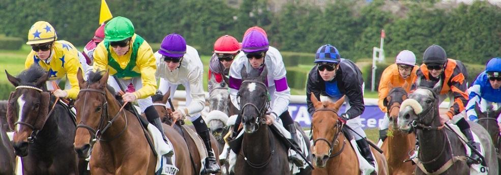 Pronostic quinté du 15 août 2018 – Prix du Hong Kong Jockey Club