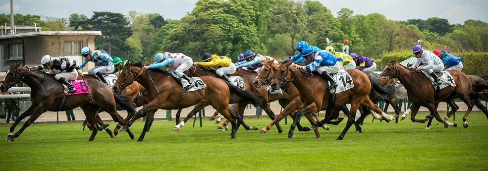 Pronostic quinté+ du 26 août 2018 – Prix Casino Barrière Deauville