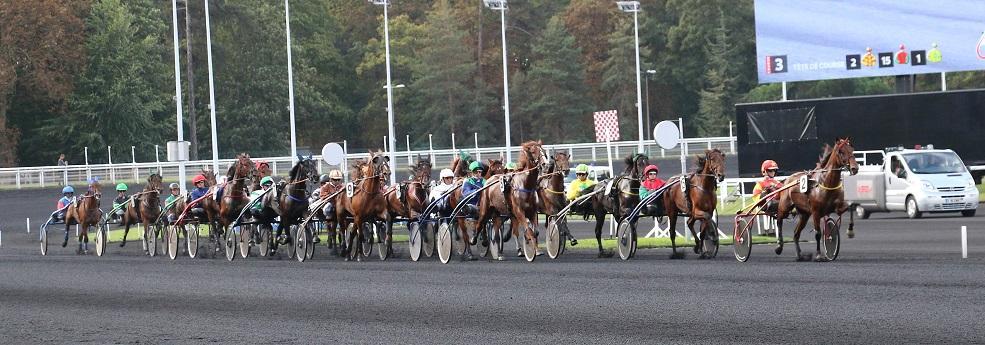 Grand Prix de Belgique - course pmu du 13 janvier 2019