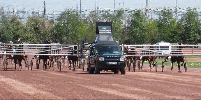 Prix du Cantal - course pmu du 21 février 2019