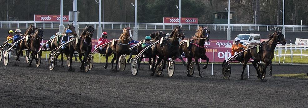 Prix de Saint-Pierre-la-Cour - course pmu du 22 février 2019