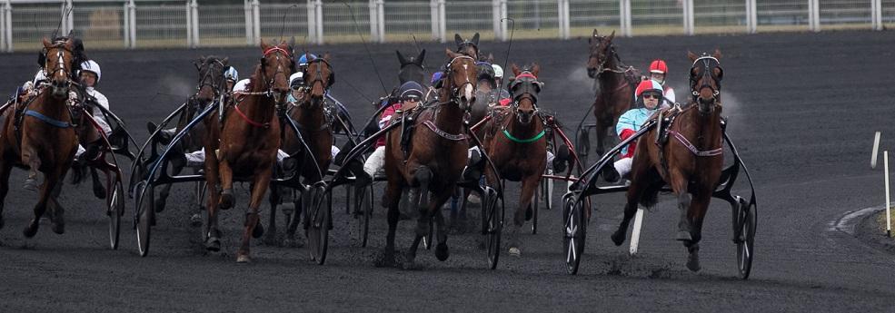 Prix du Limousin - course pmu du 8 janvier 2019