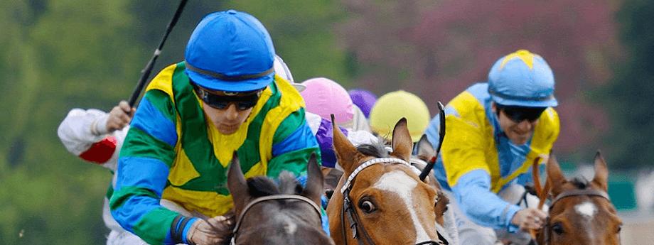 Prix de Provence - course pmu du dimanche 17 mars 2019
