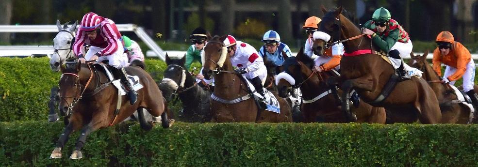 Prix de La Rochelle - course pmu du 9 avril 2019