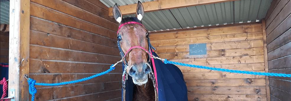 Pronostic quinté du 3 avril 2019 – Grand Prix Angers Loire Métropole