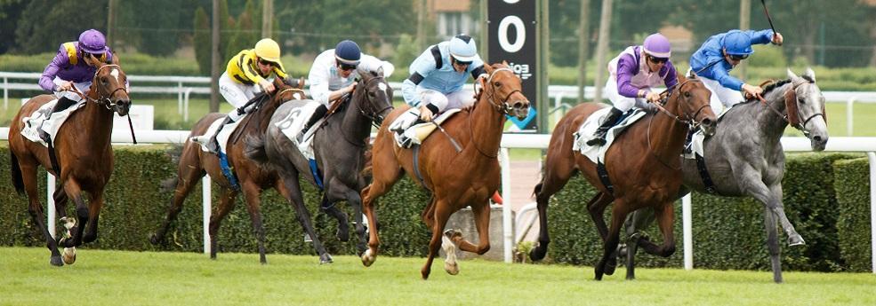 Pronostic quinté du 15 août 2019 – Prix du Hong Kong Jockey Club