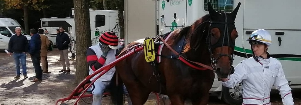 Pronostic quinté du 1er décembre 2019 – Finale du Grand National du Trot Paris-Turf
