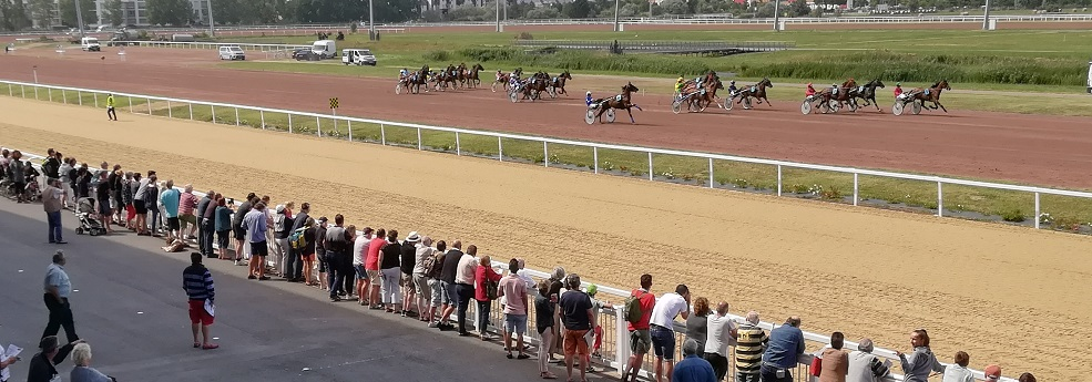Pronostic quinté du 20 novembre 2019 – 13ème Etape du Grand National du Trot Paris-Turf