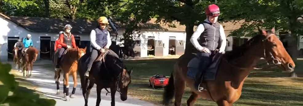 Plusieurs entraîneurs vous donnent des chevaux à jouer dès la reprise des courses hippiques
